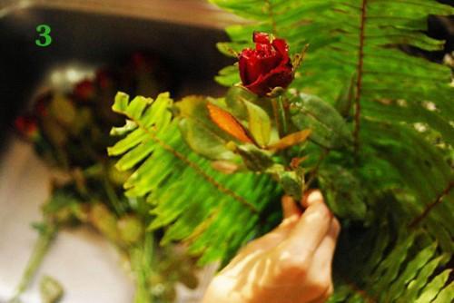 Cách cắm hoa hồng kết hợp lá dương xỉ đẹp hút hồn 2