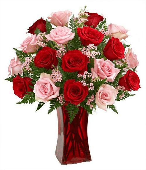 Cách cắm hoa hồng kết hợp lá dương xỉ đẹp hút hồn 8