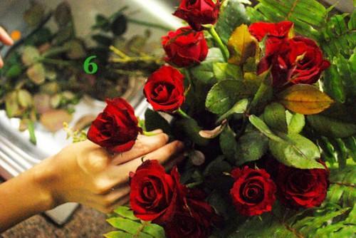 Cách cắm hoa hồng kết hợp lá dương xỉ đẹp hút hồn 5