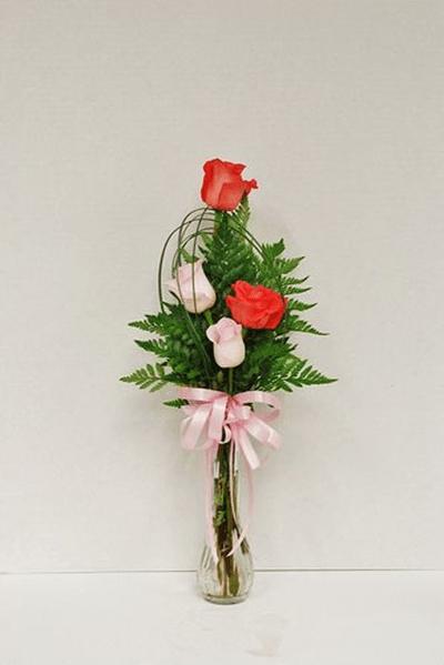 Cách cắm hoa hồng kết hợp lá dương xỉ đẹp hút hồn 11