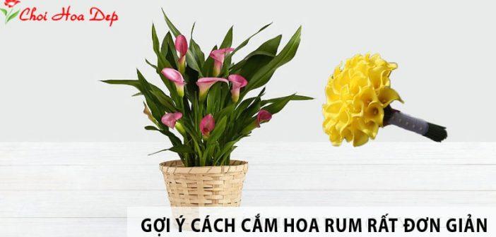 Cắm Hoa rum có khó cắm không?