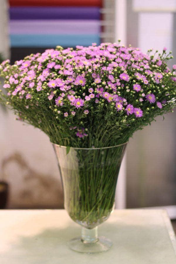 Cách cắm bình hoa chỉ bằng hoa thạch thảo tím