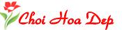 choihoadep.net – Cách cắm hoa, trồng hoa, chơi hoa theo sở thích