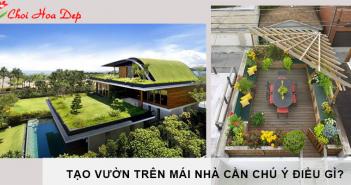 vườn cây trên mái nhà