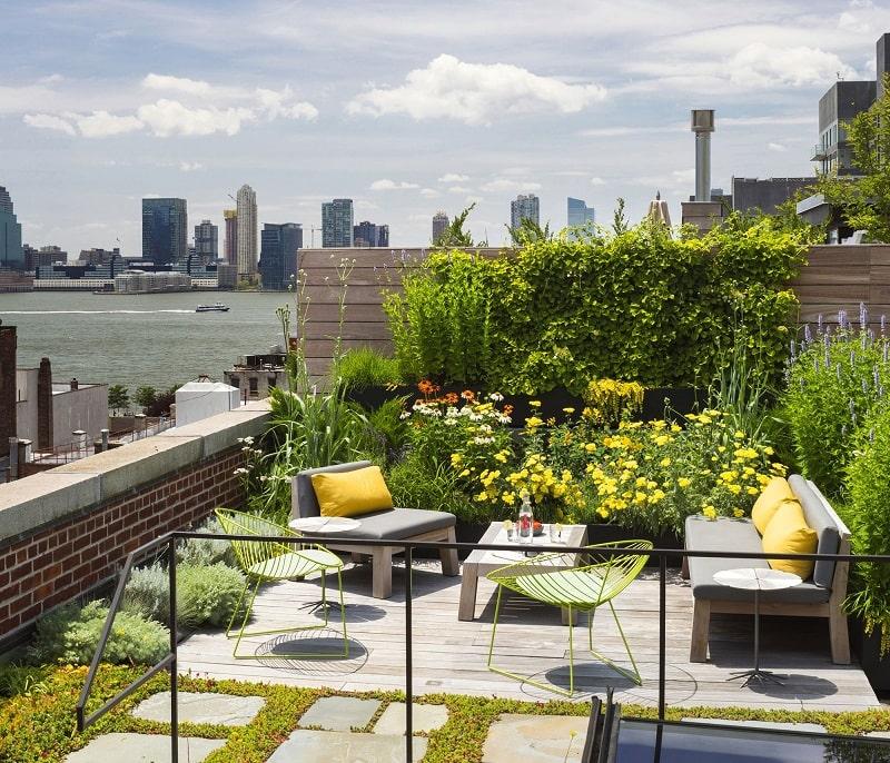 vườn trên mái nhà
