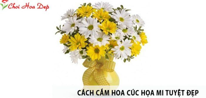 Mách bạn cách cắm hoa cúc họa mi tuyệt đẹp