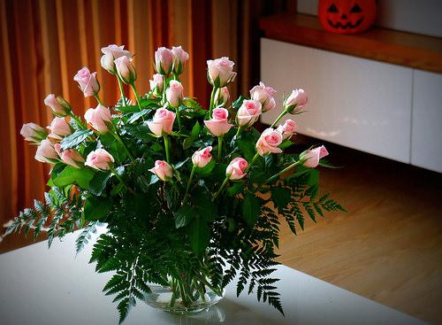 Người không khéo tay nên cắm hoa theo cách nào? 1