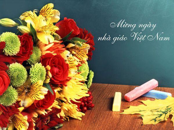 Chọn hoa gì cho thầy cô ngày 20-11
