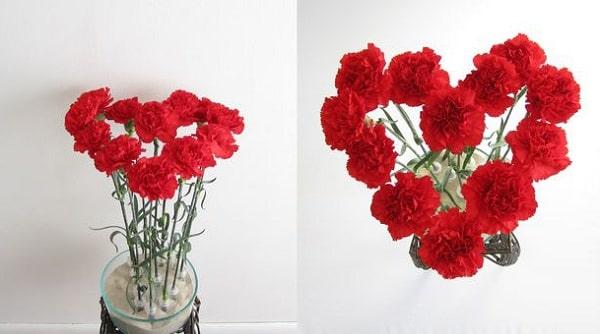 Cách bó hoa cẩm chướng hình trái tim