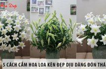 5 cách cắm hoa loa kèn đẹp dịu dàng đón tháng 4 về