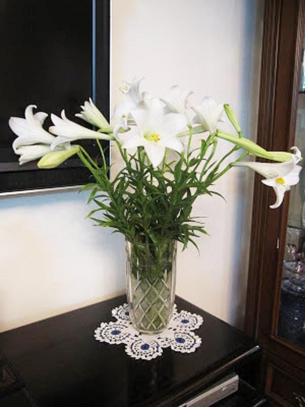 Cắm hoa trong bình thủy tinh