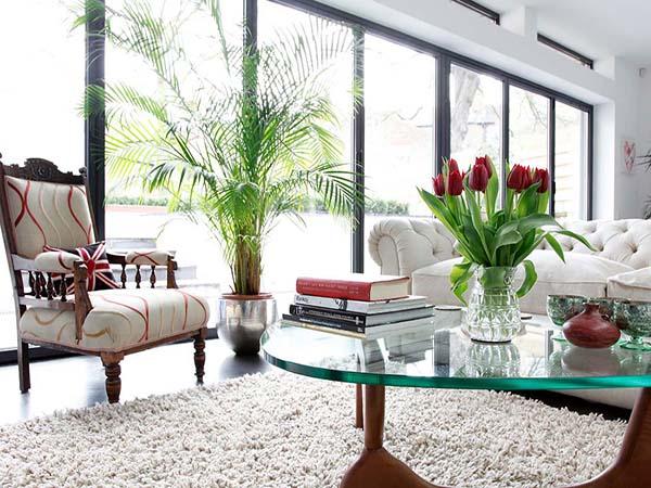 Những loại hoa, cây cảnh có tác dụng lọc không khí nên đặt trong nhà