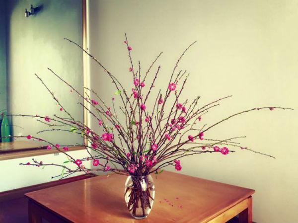 Hoa trong ngày Tết là điều không thể thiếu. Các cách cắm hoa sau sẽ giúp bạn có những bình hoa không chỉ đẹp mà đầy ý nghĩa trưng trong dịp Tết.