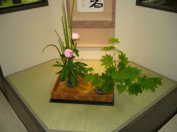 Một cách cắm hoa kiểu Nhật
