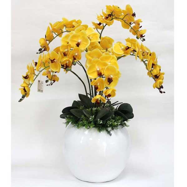 Kiểu cắm hoa lan đẹp cho dịp Tết