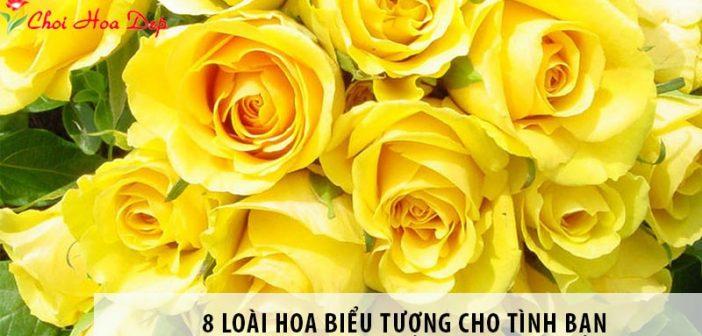 8 loài hoa biểu tượng cho tình bạn nên tặng bạn thân