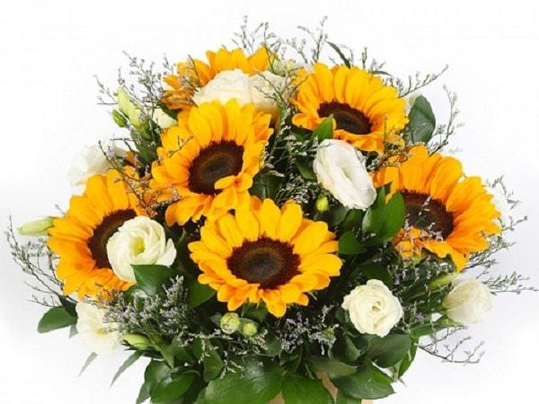 6 loài hoa biểu tượng cho tình bạn nên tặng bạn thân