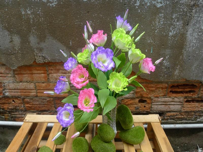 Hy vọng bài viết trên sẽ cung cấp cho các bạn những kỹ thuật trồng và chăm sóc cây hoa cát tường hiệu quả nhất.