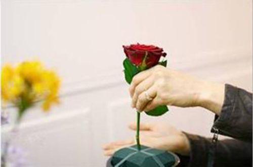 Cắm cành hoa hồng đỏ ở chính giữa bình