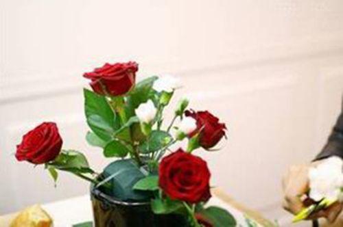 Cắm các cành cẩm chướng trắng xen kẽ giữa các hoa hồng đỏ