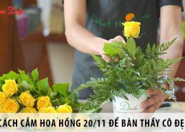 10+ cách cắm hoa hồng 20/11 để bàn thầy cô đẹp, dễ làm
