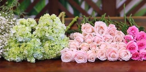 Các loại hoa hồng cần chuẩn bị