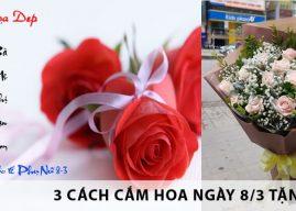 3 cách cắm hoa ngày 8/3 tặng mẹ đẹp và ý nghĩa