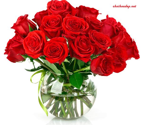 Cắm hoa hồng với bình thủy tinh tròn
