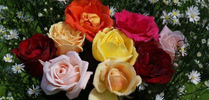 3 cách cắm hoa độc đáo và ý nghĩa ngày 20/10 tặng bạn gái