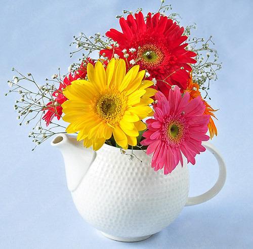 Cách cắm hoa 20/11 đẹp và ý nghĩa tặng thầy cô giáo 6