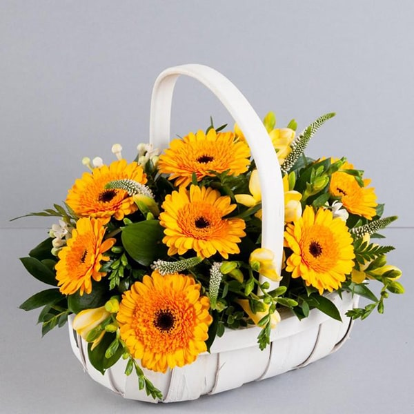Cách cắm hoa 20/11 đẹp và ý nghĩa tặng thầy cô giáo 9