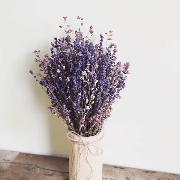 Lavender tượng trưng cho sự bình yên, may mắn và hòa thuận