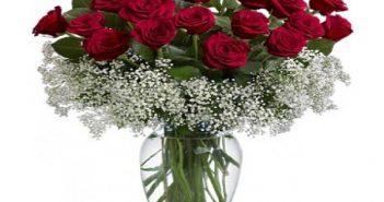 cách cắm hoa hồng trên bàn làm việc 1