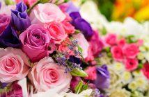 Cách chọn hoa ngày 20/10 được tươi lâu