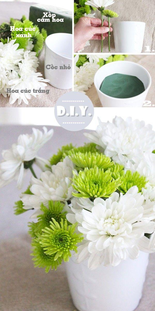 Cắm hoa cúc vào cốc trà xinh xắn