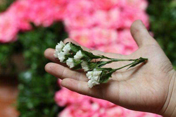 Cắt bống salem để cắm trang trí cho lẵng hoa