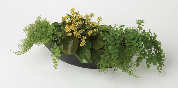 Trang trí cho chậu hoa bằng cành lá nhỏ