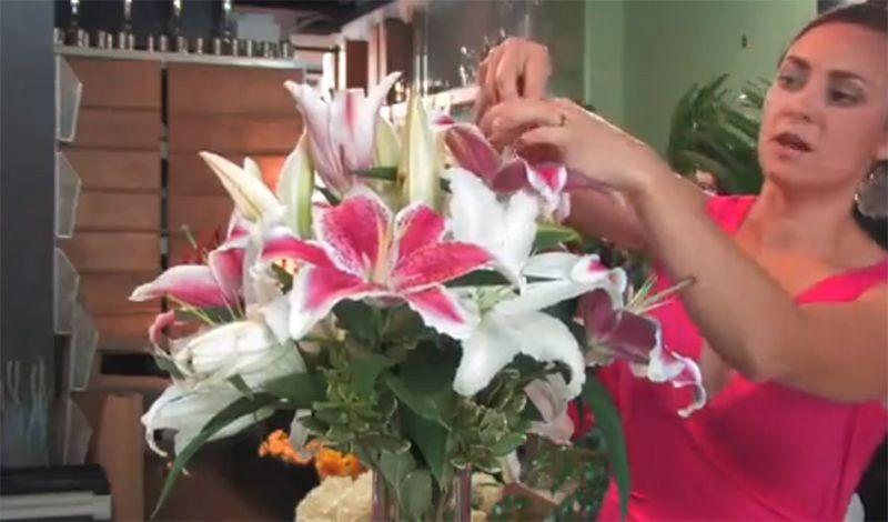 Dùng tay lấy hết nhị hoa ra khỏi chỉ nhị