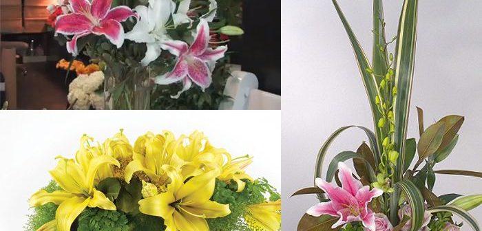 Cách cắm hoa ly ngày 8/3 đẹp, ý nghĩa và lãng mạn