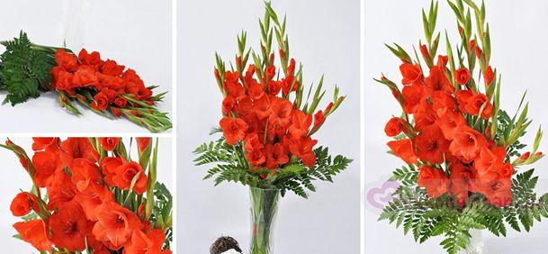 Cắm hoa lay ơn đơn giản, đẹp cho ngày Tết