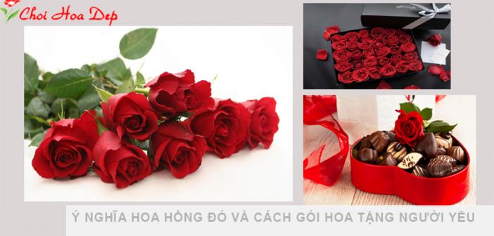 ý nghĩa hoa hồng đỏ và cách gói hoa tặng người yêu