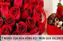 Ý nghĩa hoa hồng đỏ trong Valentine