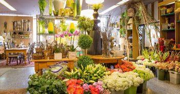 Địa chỉ shop hoa sinh nhật – Nơi giúp bạn thể hiện tình cảm