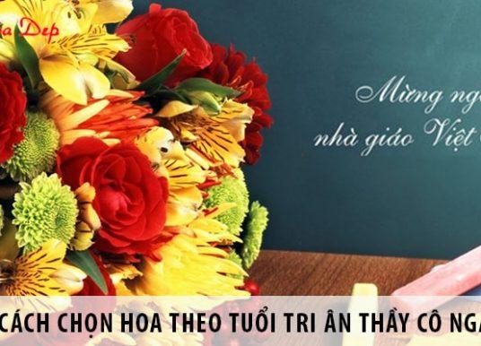 Cách chọn hoa theo tuổi tri ân thầy cô giáo ngày 20/11