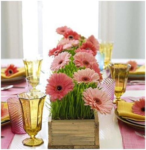 4 bước cắm hoa cúc để bàn ăn gia đình rất độc đáo