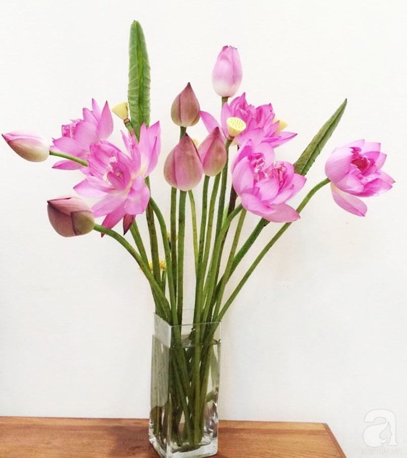 Bình hoa sen trang trọng