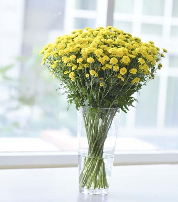 Hoa cúc vàng cắm bàn thờ gia tiên