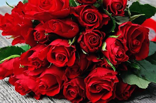 Hoa hồng là loài hoa tặng sinh nhật phổ biến nhất