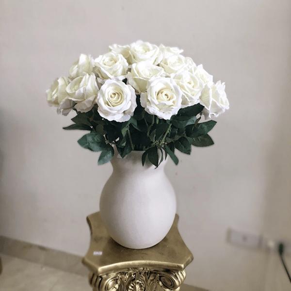 Hoa hồng trắng tinh khôi và thanh tịnh