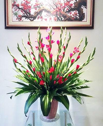 Cách cắm hoa lay ơn để bàn thờ vào ngày Tết và các ngày lễ 5